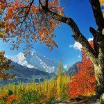 tour to hunza nagar autumn baltistan