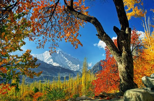 tour to hunza nagar autumn baltistan